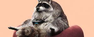 Preview wallpaper raccoon, joystick, funny, gamepad, game