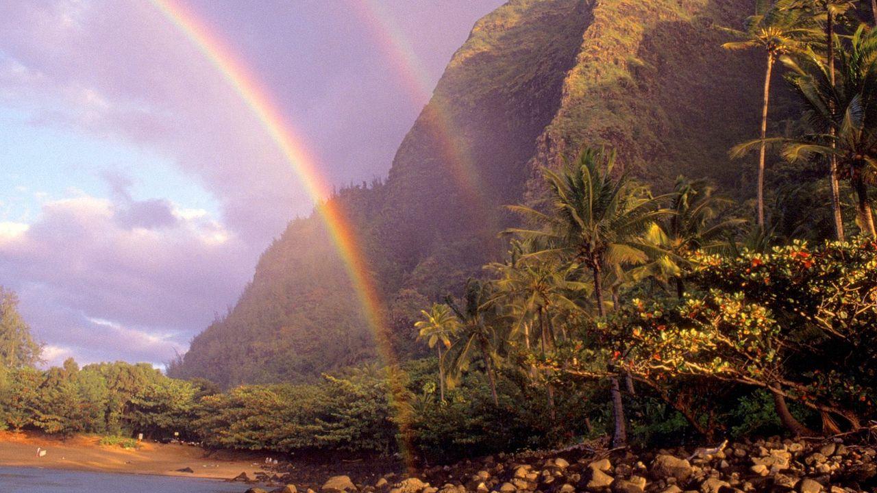 Wallpaper rainbow, sky, stones, clouds, palm trees, coast, hawaii