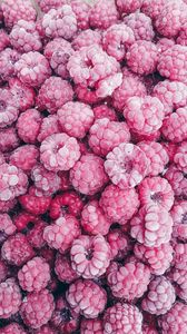 Preview wallpaper raspberry, berry, fruit, dessert