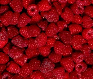Preview wallpaper raspberry, berry, fruit, dessert, red