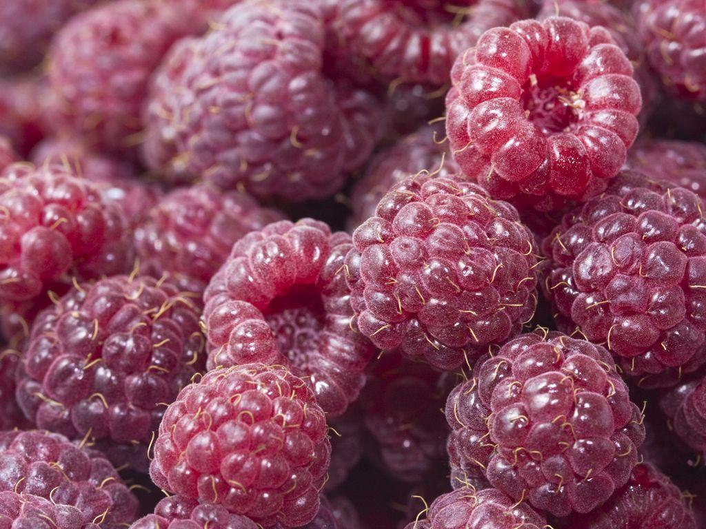 1024x768 Wallpaper raspberry, berries, red, ripe, juicy