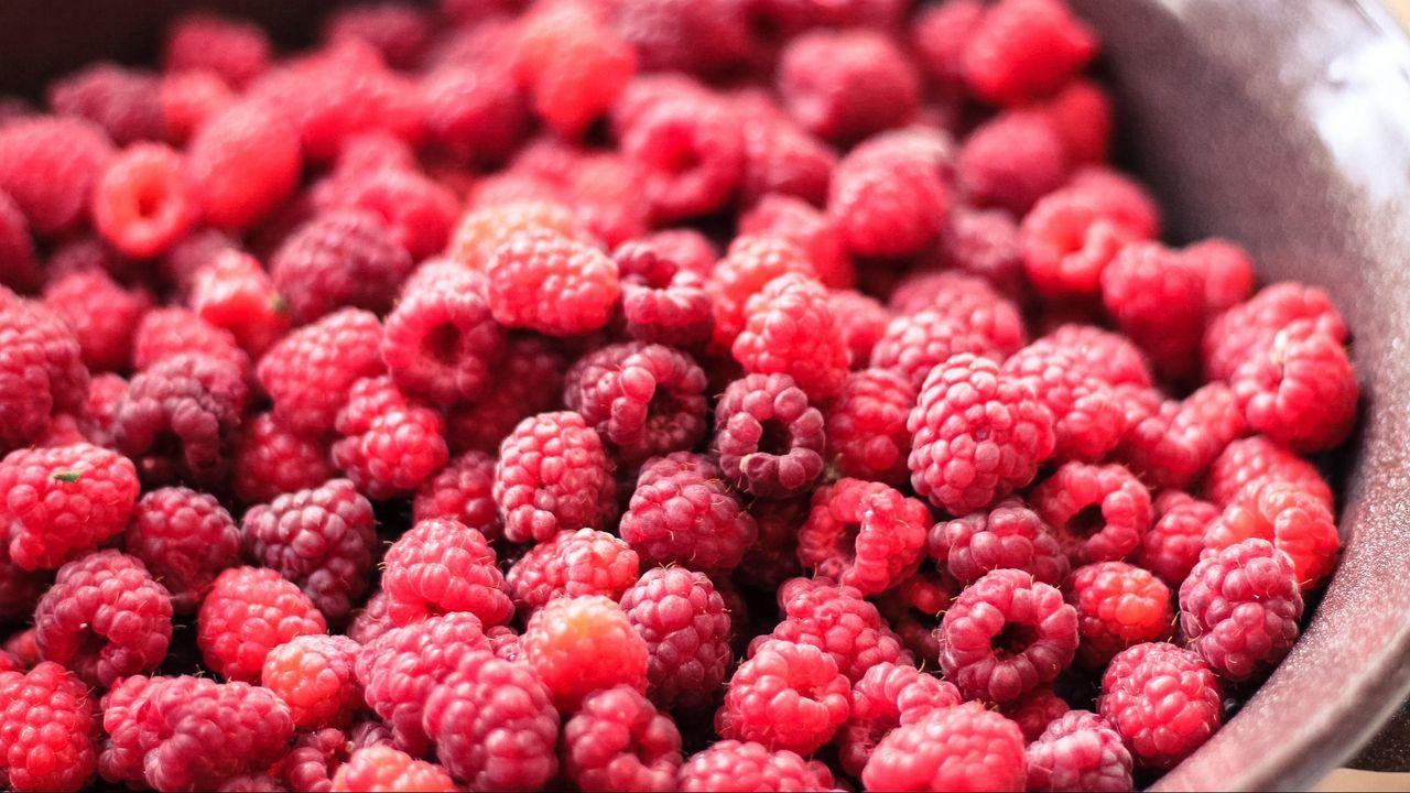 1280x720 Wallpaper raspberry, berry, ripe, dish