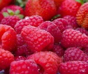 Preview wallpaper raspberry, berry, ripe, plenty