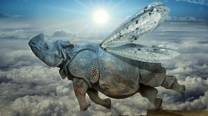 Preview wallpaper rhino, wings, flight, clouds, icarus