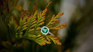 Preview wallpaper ring, stone, plant