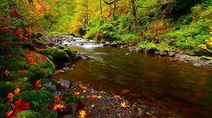 Preview wallpaper river, rocks, leaves, autumn