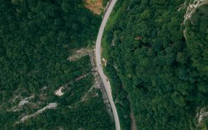 Preview wallpaper road, forest, top view, trees