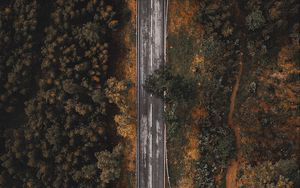 Preview wallpaper road, forest, trees, top view, overview