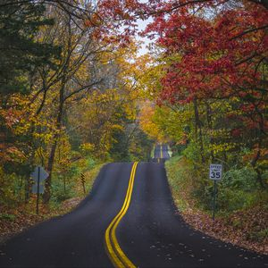 Preview wallpaper road, marking, forest, trees, autumn, landscape