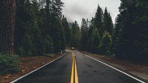 Preview wallpaper road, marking, trees, turn, asphalt, forest