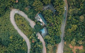 Preview wallpaper road, top view, forest, trees