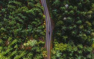 Preview wallpaper road, top view, trees, car, marking
