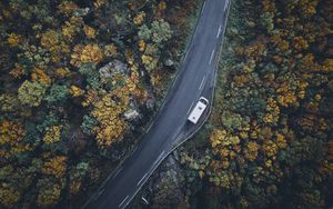 Preview wallpaper road, top view, trees, autumn, car
