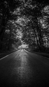 Preview wallpaper road, trees, bw, dark, forest