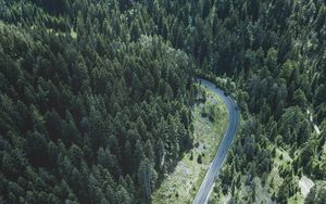Preview wallpaper road, trees, top view, forest, turn