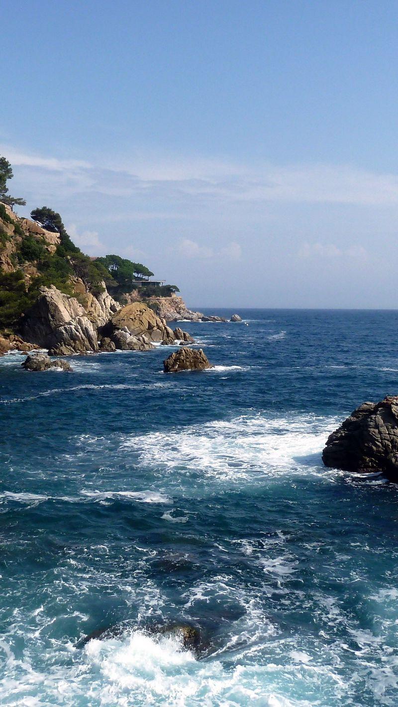 800x1420 Wallpaper rocks, sea, coast, stones, cuts, dark blue, trees, foam, horizon, force