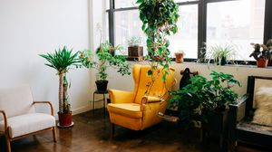 Preview wallpaper room, furniture, interior, flowers, chair, window