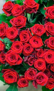 Preview wallpaper roses, flowers, bouquet, red