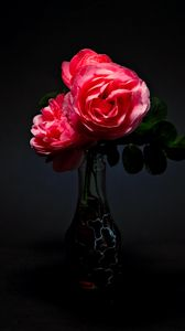 Preview wallpaper roses, flowers, bouquet, vase, pink