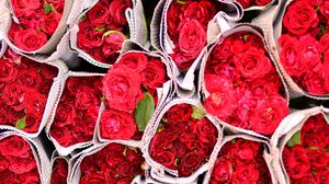Preview wallpaper roses, flowers, bouquets, red