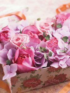 Preview wallpaper roses, flowers, box, tape, gift