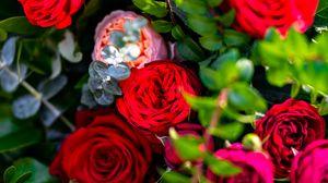 Preview wallpaper roses, flowers, petals, bush, leaves, macro