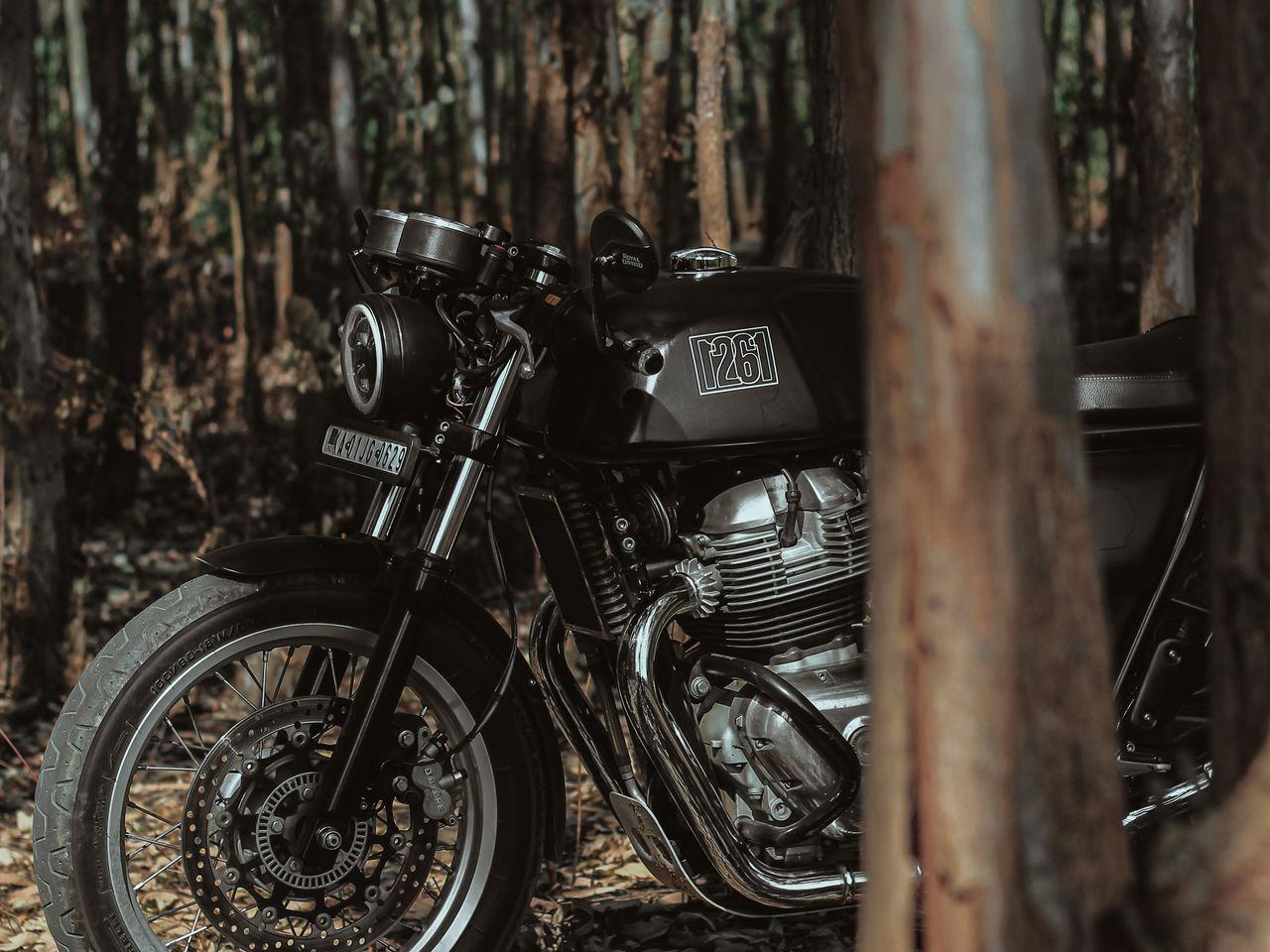 1280x960 Wallpaper royal enfield, motorcycle, bike, black, forest
