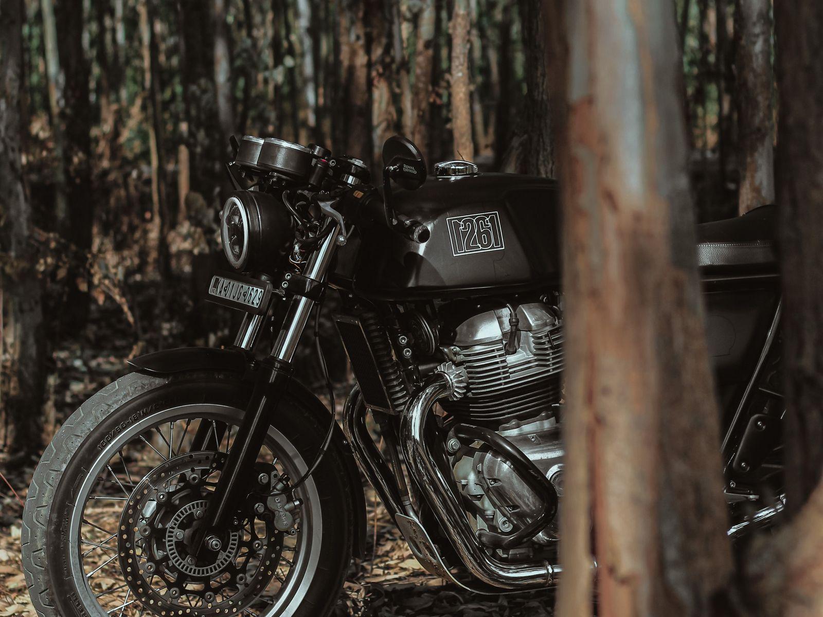 1600x1200 Wallpaper royal enfield, motorcycle, bike, black, forest