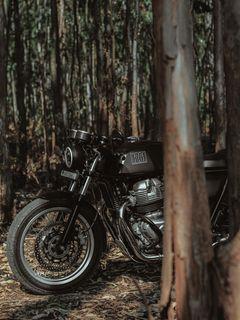 240x320 Wallpaper royal enfield, motorcycle, bike, black, forest