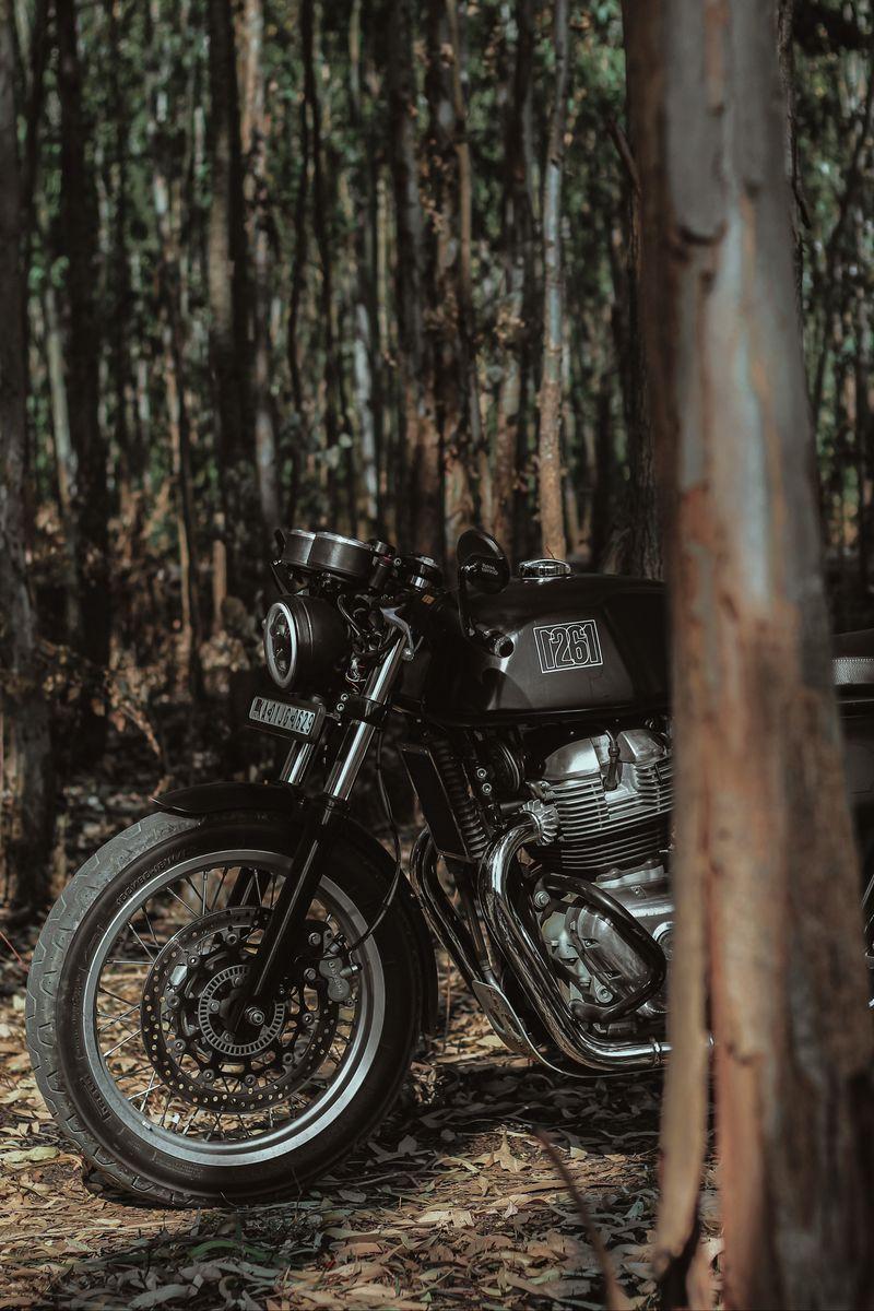 800x1200 Wallpaper royal enfield, motorcycle, bike, black, forest
