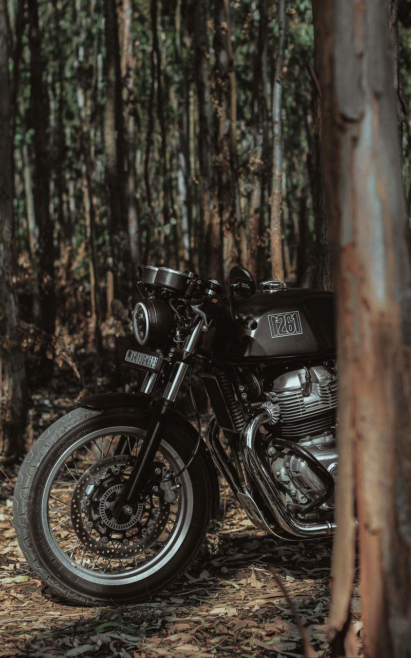 800x1280 Wallpaper royal enfield, motorcycle, bike, black, forest