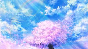 Preview wallpaper sakura, rainbow, art, bloom, sky, clouds
