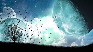 Preview wallpaper satellite, moon, birds, art, tree, flying