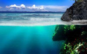Preview wallpaper sea, coast, rocks, underwater world, vegetation, fish
