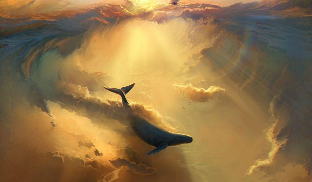 1024x600 Wallpaper shark, dolphin, sea, art, underwater world