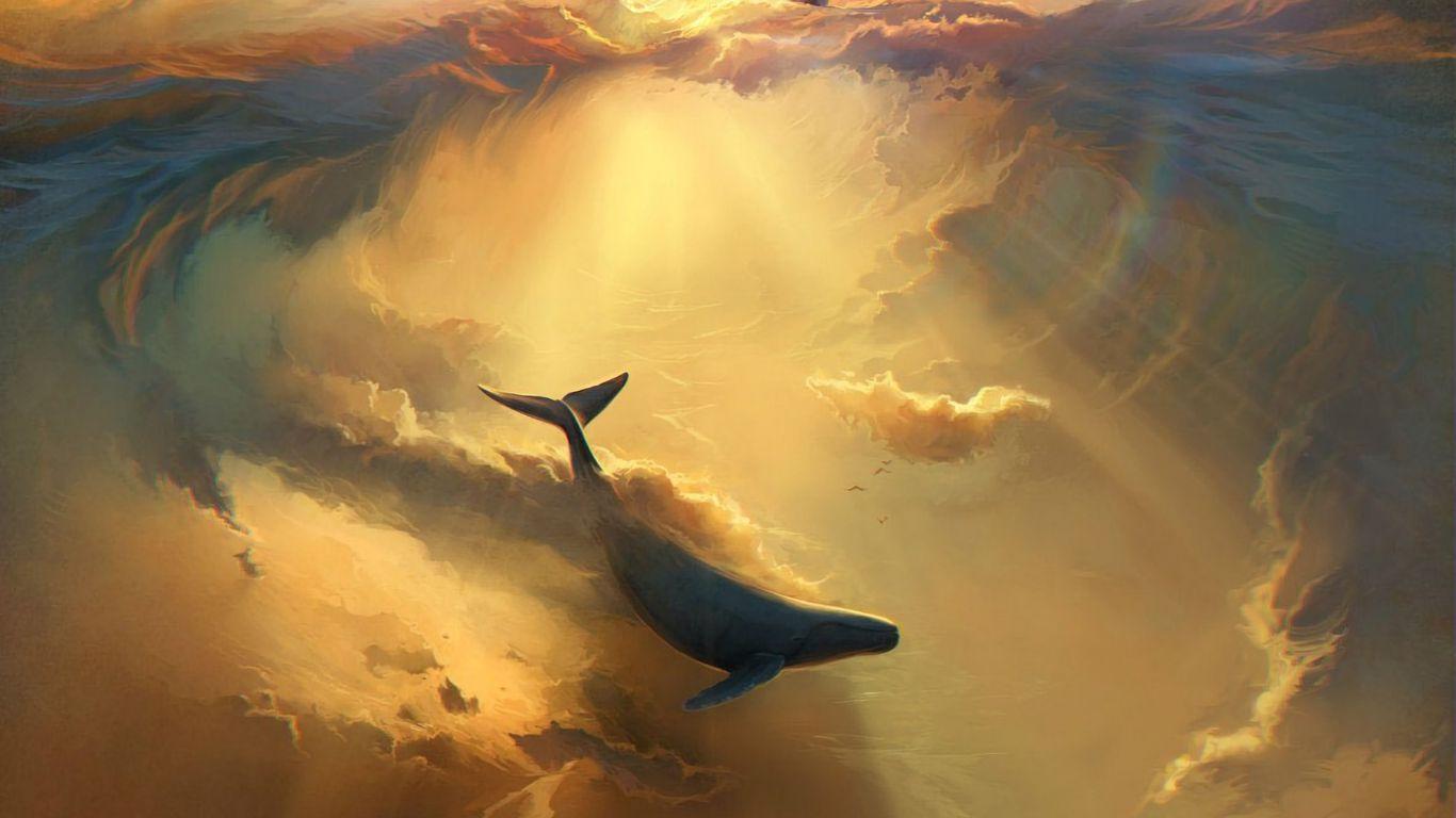 1366x768 Wallpaper shark, dolphin, sea, art, underwater world
