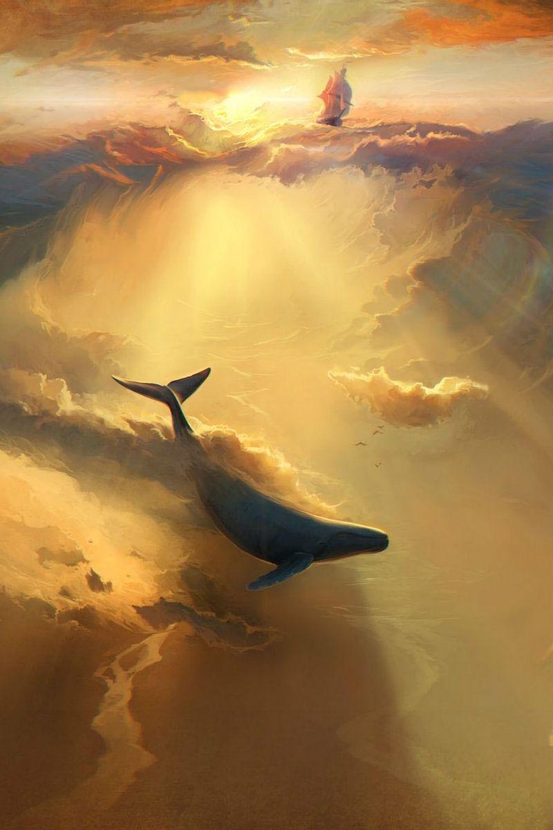 800x1200 Wallpaper shark, dolphin, sea, art, underwater world