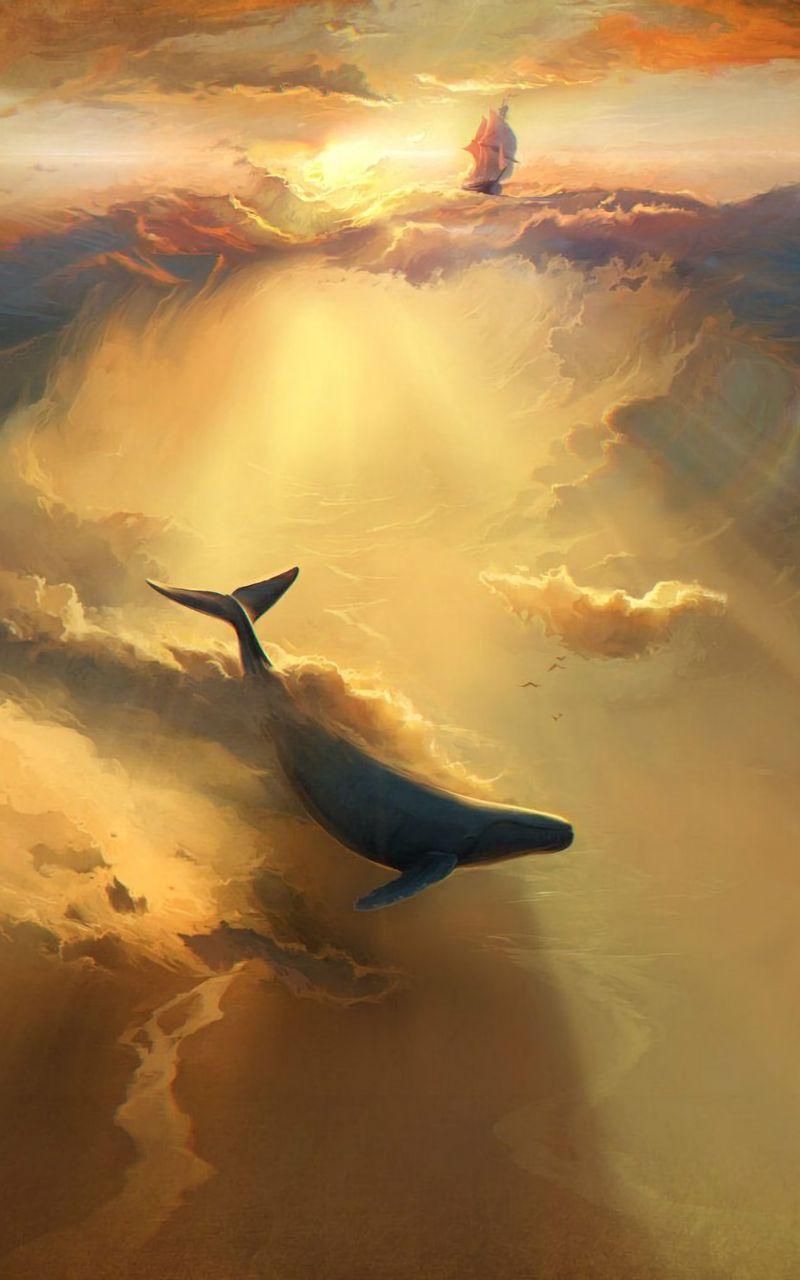 800x1280 Wallpaper shark, dolphin, sea, art, underwater world