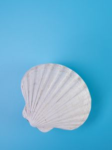 Preview wallpaper shell, relief, blue