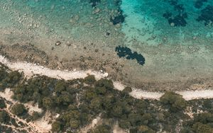 Preview wallpaper shore, beach, aerial view, trees, stones