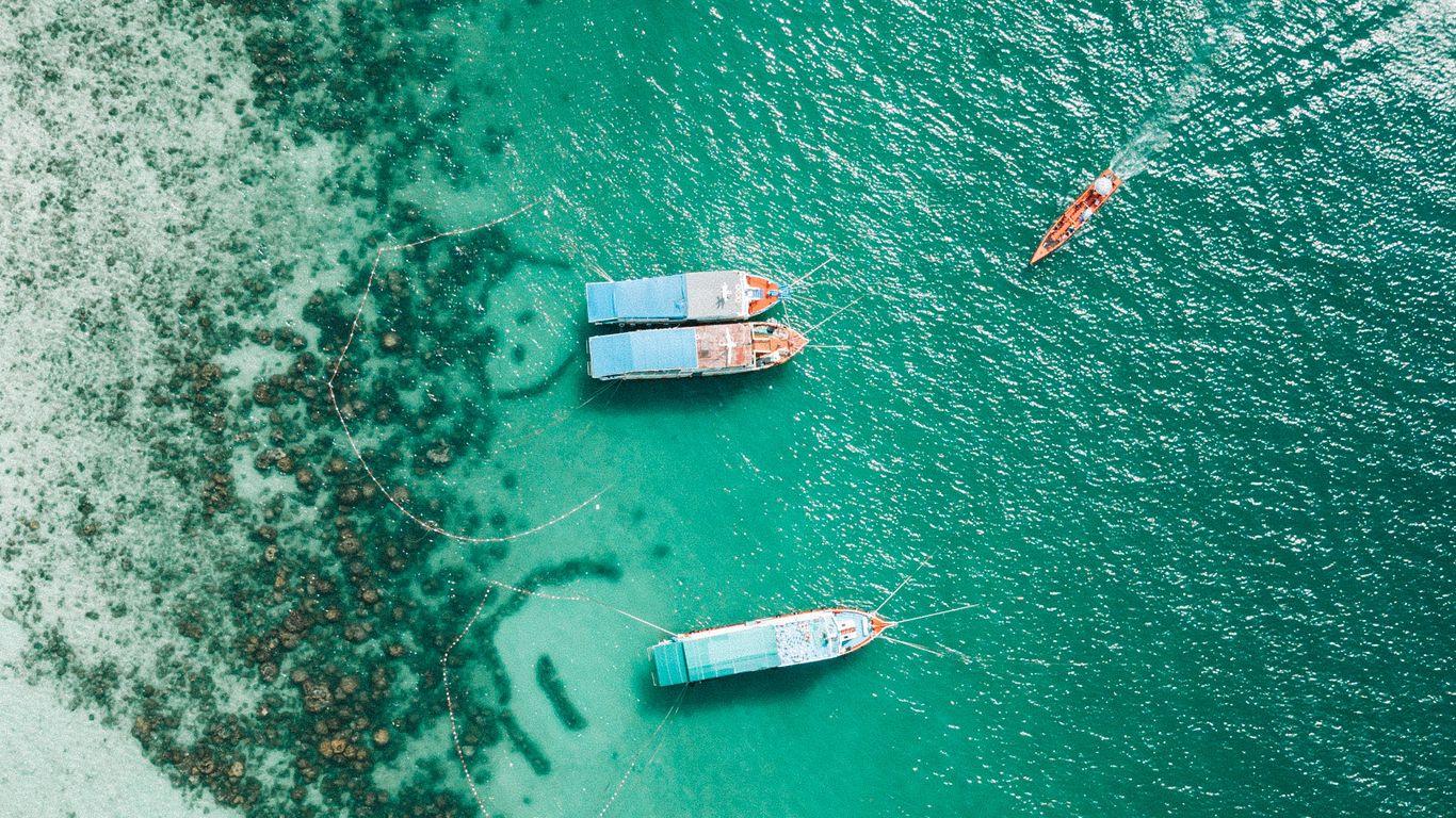 1366x768 Wallpaper shore, boats, sandbar, ocean, moored, aerial view