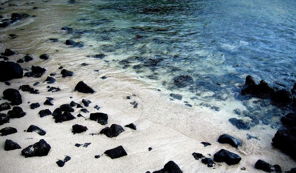 1024x600 Wallpaper shore, stones, summer, river