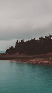 Preview wallpaper shore, trees, sea