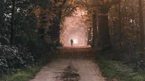 Preview wallpaper silhouette, alone, path, trees, nature