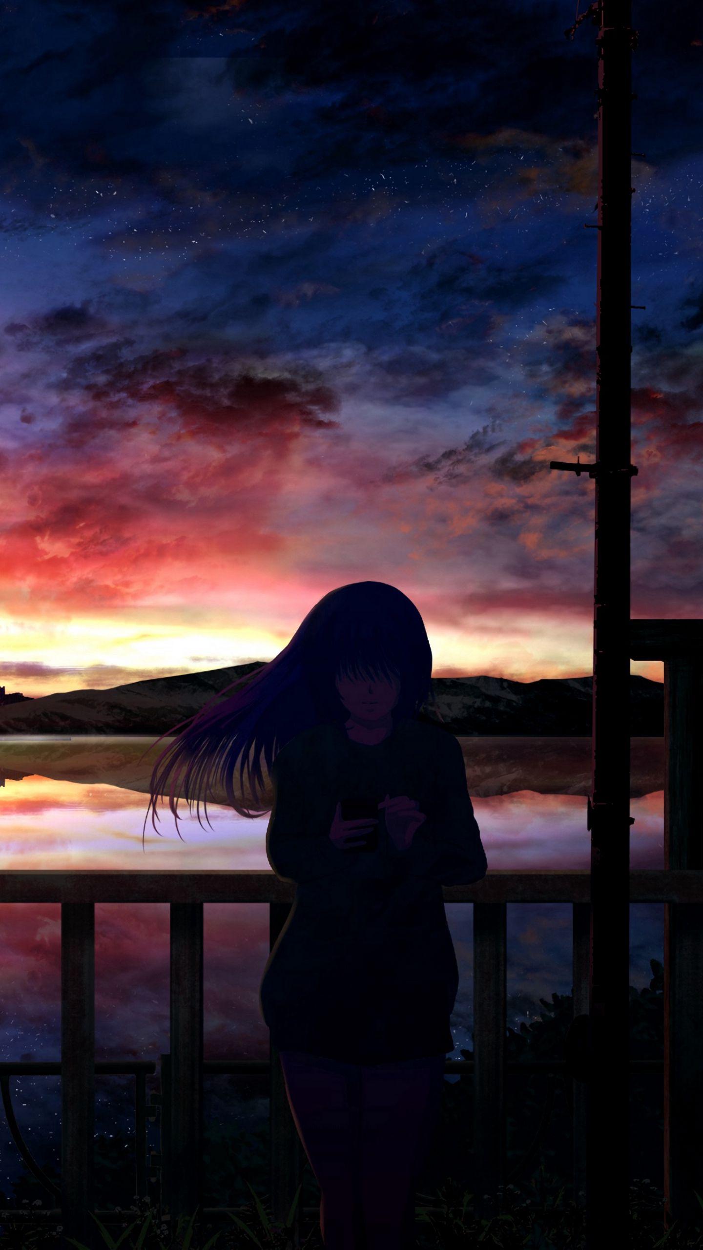 1440x2560 Wallpaper silhouette, night, starry sky, girl, anime