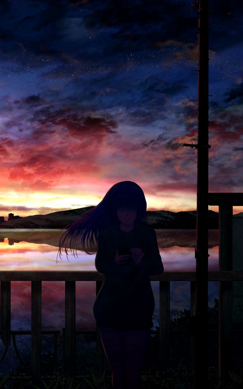 800x1280 Wallpaper silhouette, night, starry sky, girl, anime