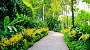 Preview wallpaper singapore, botanic gardens, walking paths, trees