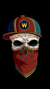 Preview wallpaper skull, cap, kerchief, logo, inst