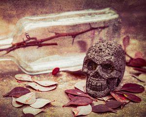 Preview wallpaper skull, leaves, stone, aesthetics