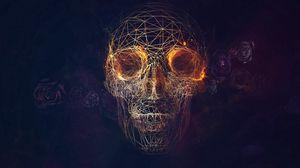 Preview wallpaper skull, lines, roses, geometry